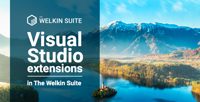 Visual Studio extensions in The Welkin Suite