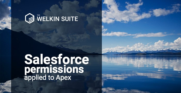 Salesforce permissions applied to Apex