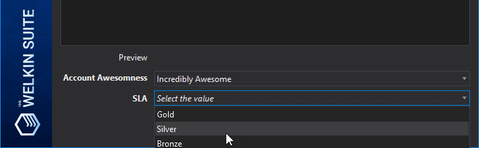 Previewing dependent and controlling picklists settings in the IDE