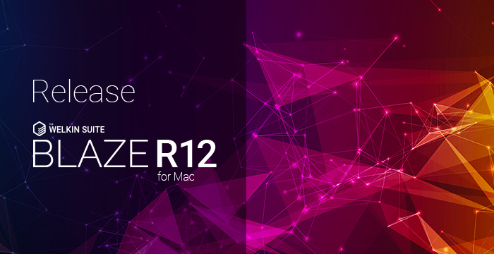 Blaze R12 with Field Usage Report, Custom Metadata Types, OAuth and other improvements