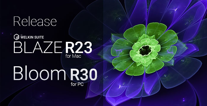 The Welkin Suite Bloom R30 and Blaze R23 with enhanced Validation Rules editor