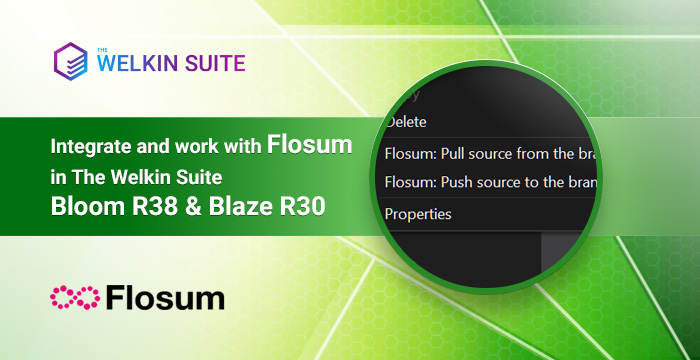 The Welkin Suite and Flosum integration - continuous integration right in the IDE